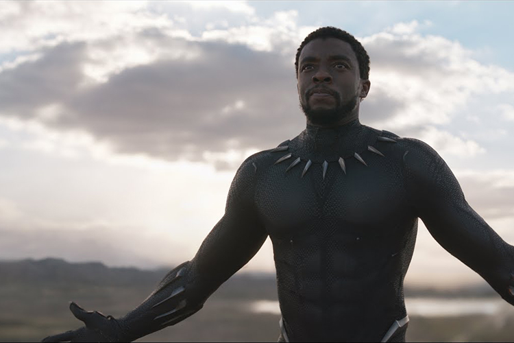 'Black Panther' and the Goodness of Dwelling in Unity